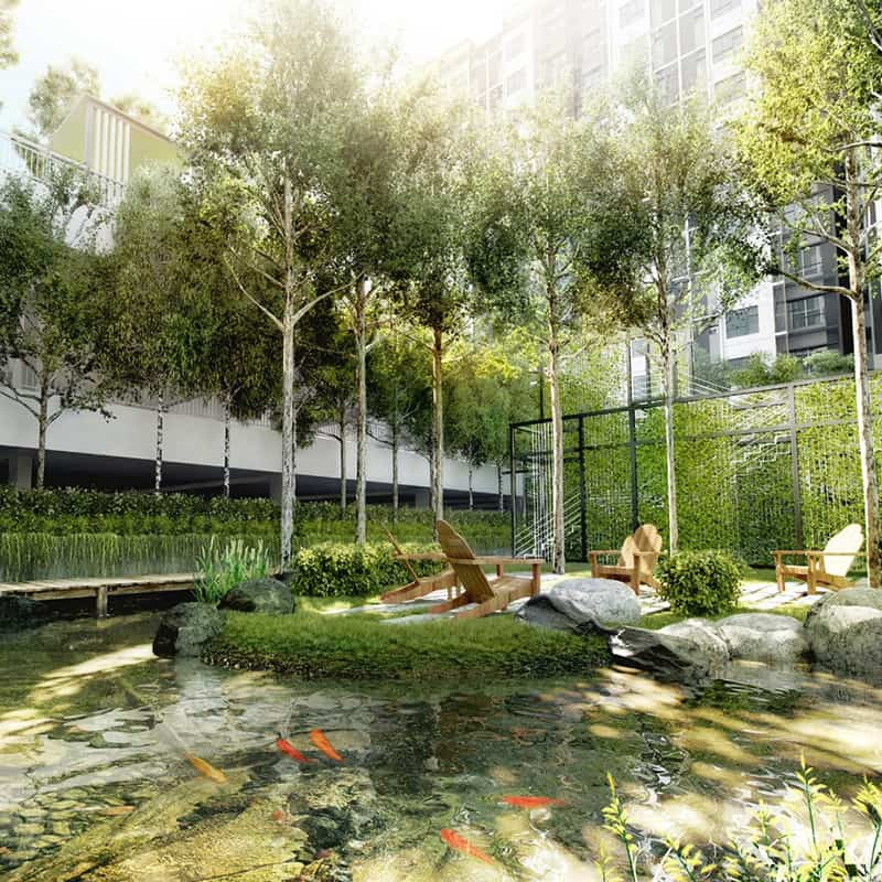 Embayu Residence Damansara West Mesmerizing Koi Pond