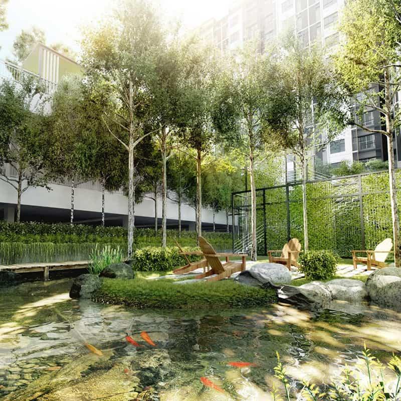 Embayu Residence Damansara West Mesmerizing Koi Pond
